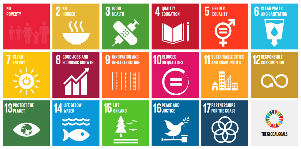 United Nations Sustainable Development Goals Open Pedagogy Assignments
